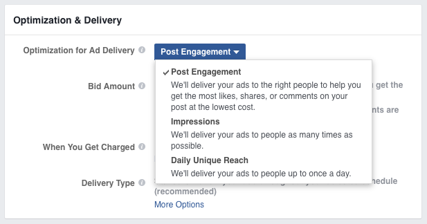 facebook optimization for ad delivery section